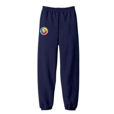 Pantalon trening Nationala fotbal Romania