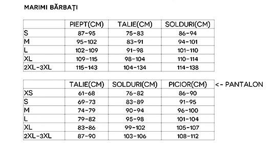 trening de prezentare romania tabel marimi